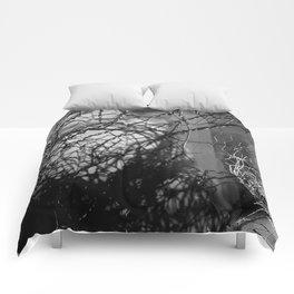 Enter Comforters