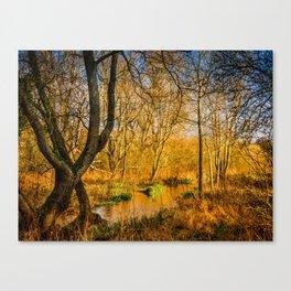 Kintbury Marshes Canvas Print