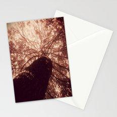 shade Stationery Cards