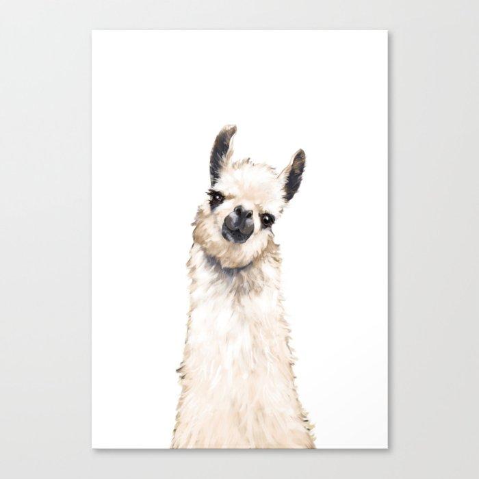 Llama Leinwanddruck