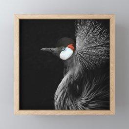 CROWNED CRANE by Monika Strigel Framed Mini Art Print