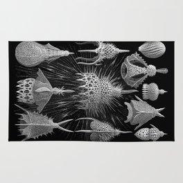 Plankton Shells (Cyrtoidea) by Ernst Haeckel Rug