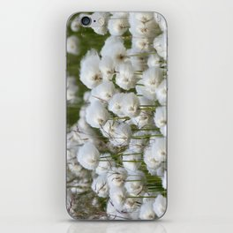 Cotton grass iPhone Skin