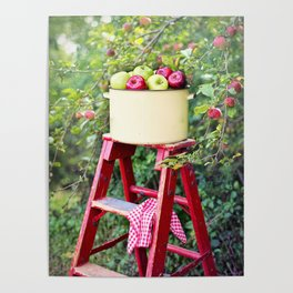 Apple Picking Ladder and Basket Poster