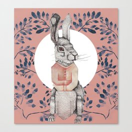Loony Rabbit Canvas Print