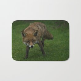 Wild Red Fox Bath Mat