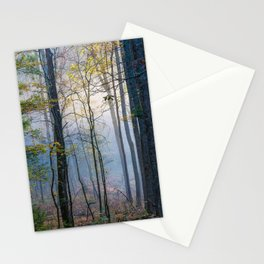 Mystic Forest - Early Morning Glow in Smoky Mountains Stationery Cards