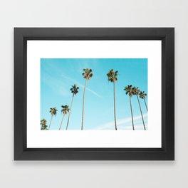 Palm Tree Sunshine Framed Art Print