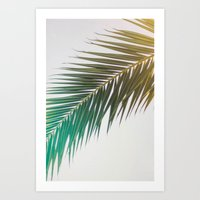 palm tree Art Prints featuring palm tree by iulia pironea