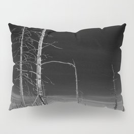 Lodgepole Pines Pillow Sham