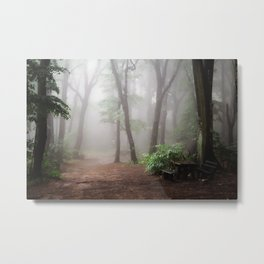 Misty Woods #adventure #photography Metal Print