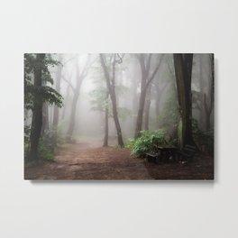 Misty Woods #adventure #photography Metal Print