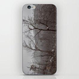 Wintry Desolation iPhone Skin