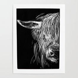 Scottish Highland Cow Poster