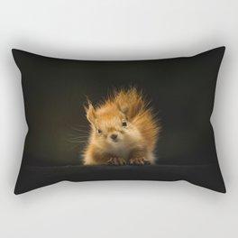 squirrel in the dark Rectangular Pillow