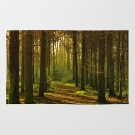 A Walk in the Woods Scenic Photography. Rug