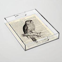 Book Art Page Owl Black & White Acrylic Tray