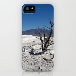 Single dead tree in natural mineral stone iPhone Case