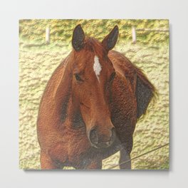 Painted brown Horse Metal Print