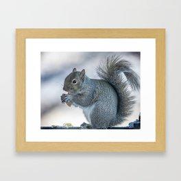 Winter squirrel Framed Art Print