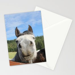 Horse Smile Photography Print Stationery Cards