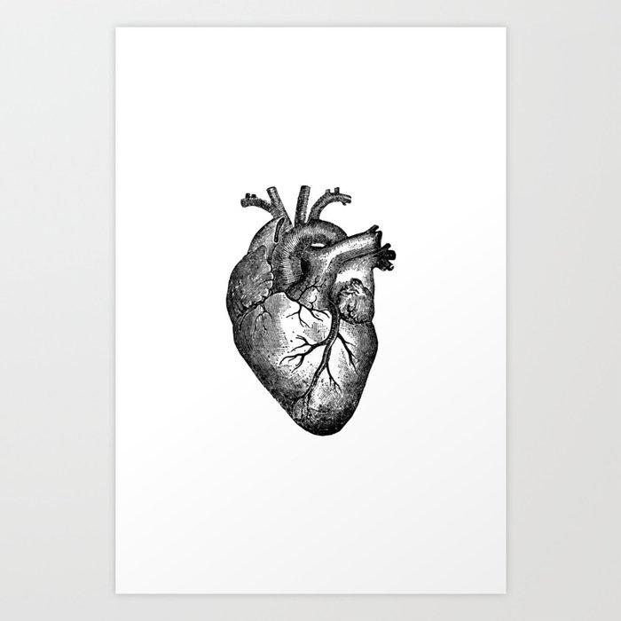 Vintage Heart Anatomy Art Print by stilleskyggerart | Society6
