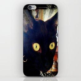 Glorified Housecat iPhone Skin