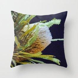 Native Banksia Throw Pillow