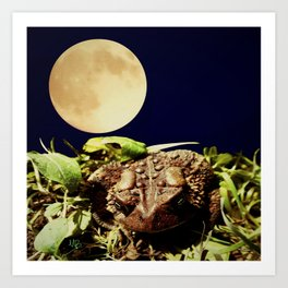 The Toad's Moon Art Print