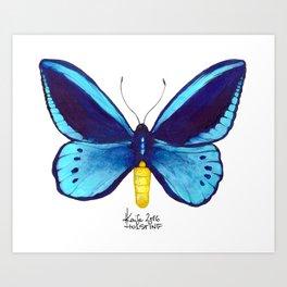 Blueberry Breeze Art Print