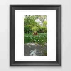 Maxik Framed Art Print