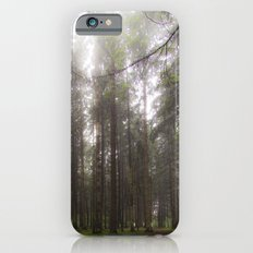 Morning walk in the forest iPhone 6s Slim Case