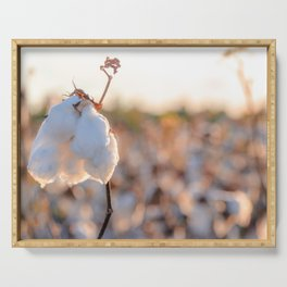 Cotton Field 14 Serving Tray
