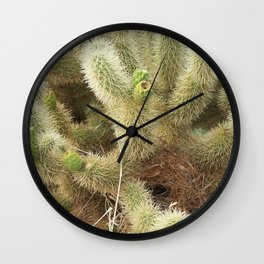 Bird's Nest in Teddy Bear Cholla, #1 Wall Clock