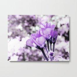 Ultraviolet Lavender Flowers Metal Print