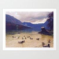 Save the duck Art Print