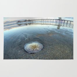 Chris Harsh Photos * A Low Tide Sand Dollar * Huntington Beach Pier  Rug