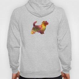 Norfolk Terrier in watercolor Hoody