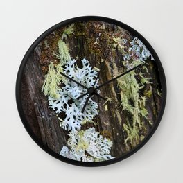 Moss and Fungi on a Forest Tree Wall Clock