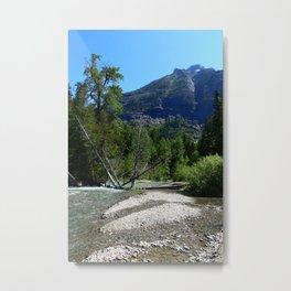 Serene Nature Metal Print