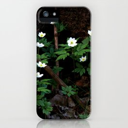 Anemone Nemorosa iPhone Case