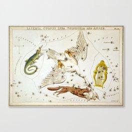 Sidney Hall - Urania's Mirror (1824) - Lacerta, Cygnus, Lyra, Vulpecula and Anser Canvas Print