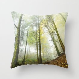 Interlude v3 Throw Pillow