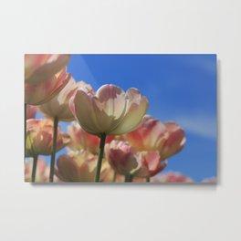 Yellow Tulips In The Sky Metal Print