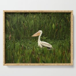 American White Pelican Serving Tray