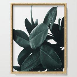 Dark Green Rubber Plant Serving Tray