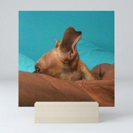 MADiSON (shelter pup) Mini Art Print