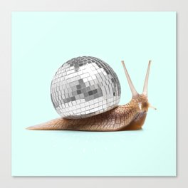 DISCO SNAIL Canvas Print