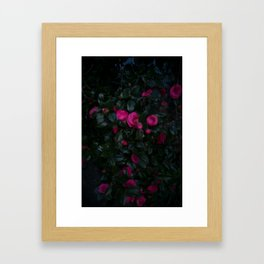 Jeju Flowers Framed Art Print