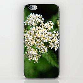 Yarrow Flowers iPhone Skin